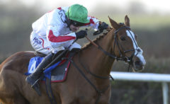 RACE WINNER Down Ace ridden by Dougie Costello races after clearing the last - RACE 4 - 14.20 - Season«s Greetings From totepool Mares« Novices« Hurdle - PHOTO mandatory by-line: Dan Mullan/Pinnacle - Photo Agency UK Tel: +44(0)1363 881025 - Mobile:0797 1270 681 - VAT Reg No: 768 6958 48 - 30/12/2013 - EQUESTRIAN - HORSE RACING - Taunton Racecourse, Taunton, Somerset.