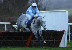 RACE WINNER Sarenice ridden by Hadden Frost clears the last - RACE 7 - 15.55 - Collect totepool Winnings At Betfred Shops Handicap Hurdle - PHOTO mandatory by-line: Dan Mullan/Pinnacle - Photo Agency UK Tel: +44(0)1363 881025 - Mobile:0797 1270 681 - VAT Reg No: 768 6958 48 - 30/12/2013 - EQUESTRIAN - HORSE RACING - Taunton Racecourse, Taunton, Somerset.
